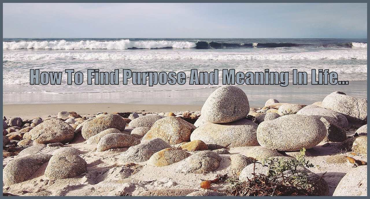purpose and meaning